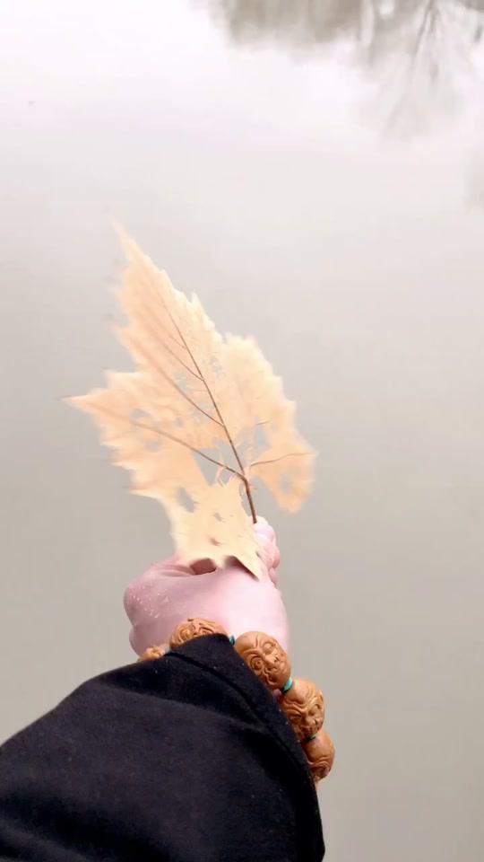 白衣天使加油 #武汉加油图片